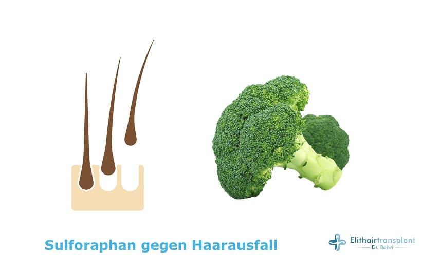 Sulforaphan gegen Haarausfall